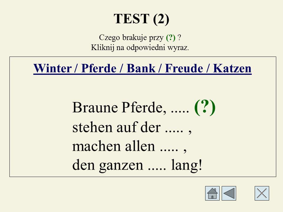 Czego brakuje przy (?) ? Kliknij na odpowiedni wyraz. Winter / Pferde / Bank / Freude / Katzen Braune..... (?),..... stehen auf der....., machen allen