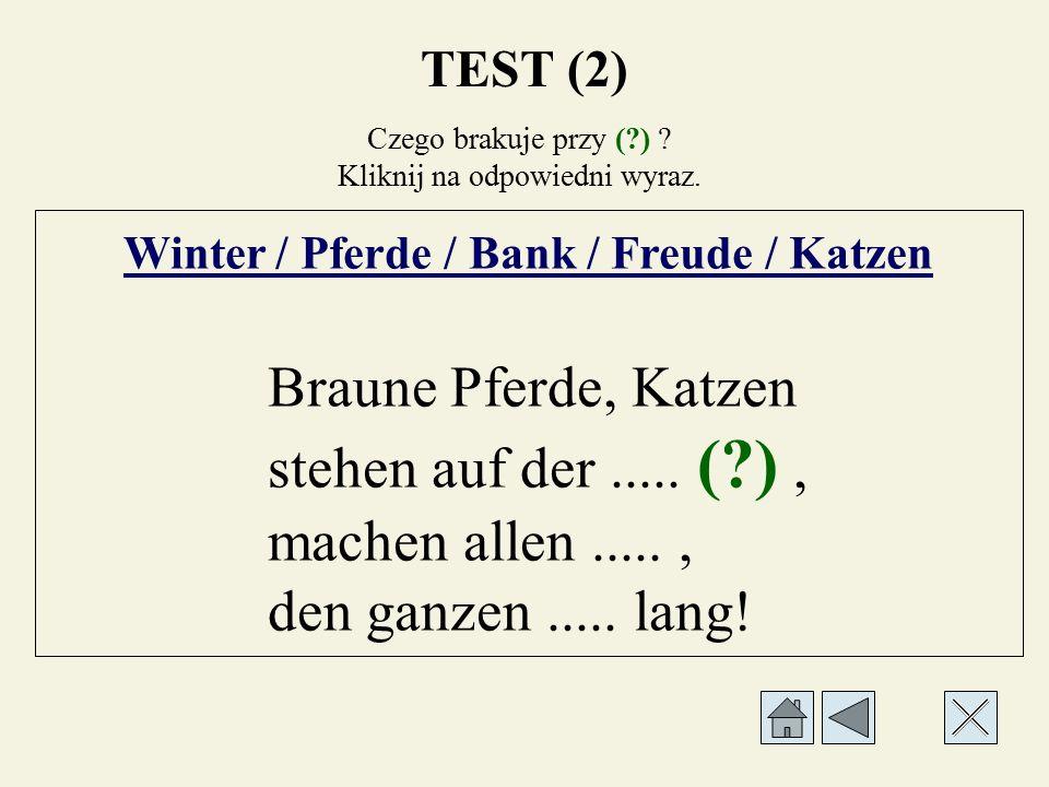Czego brakuje przy (?) ? Kliknij na odpowiedni wyraz. Winter / Pferde / Bank / Freude / Katzen Braune Pferde,..... (?) stehen auf der....., machen all