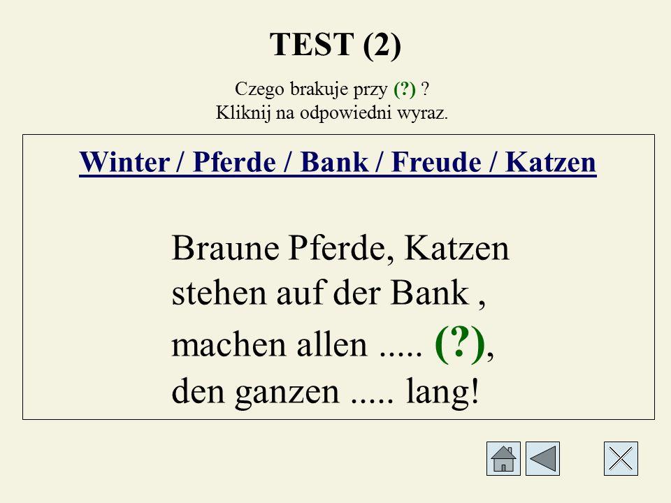 Czego brakuje przy (?) ? Kliknij na odpowiedni wyraz. Winter / Pferde / Bank / Freude / Katzen Braune Pferde, Katzen stehen auf der..... (?), machen a
