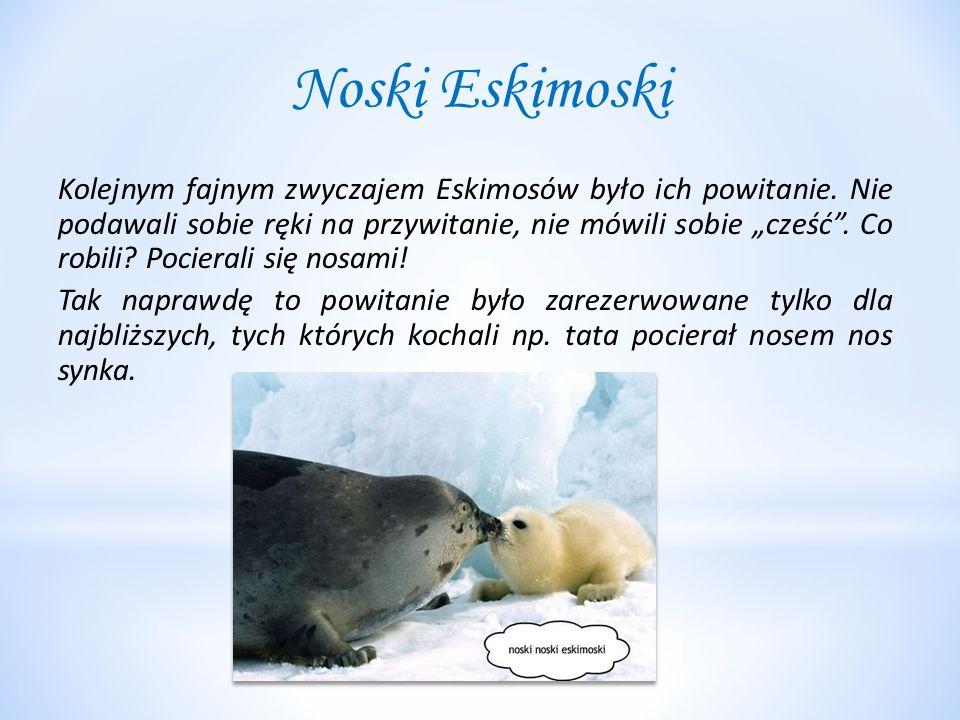 """Noski Eskimoski Kolejnym fajnym zwyczajem Eskimosów było ich powitanie. Nie podawali sobie ręki na przywitanie, nie mówili sobie """"cześć"""". Co robili? P"""