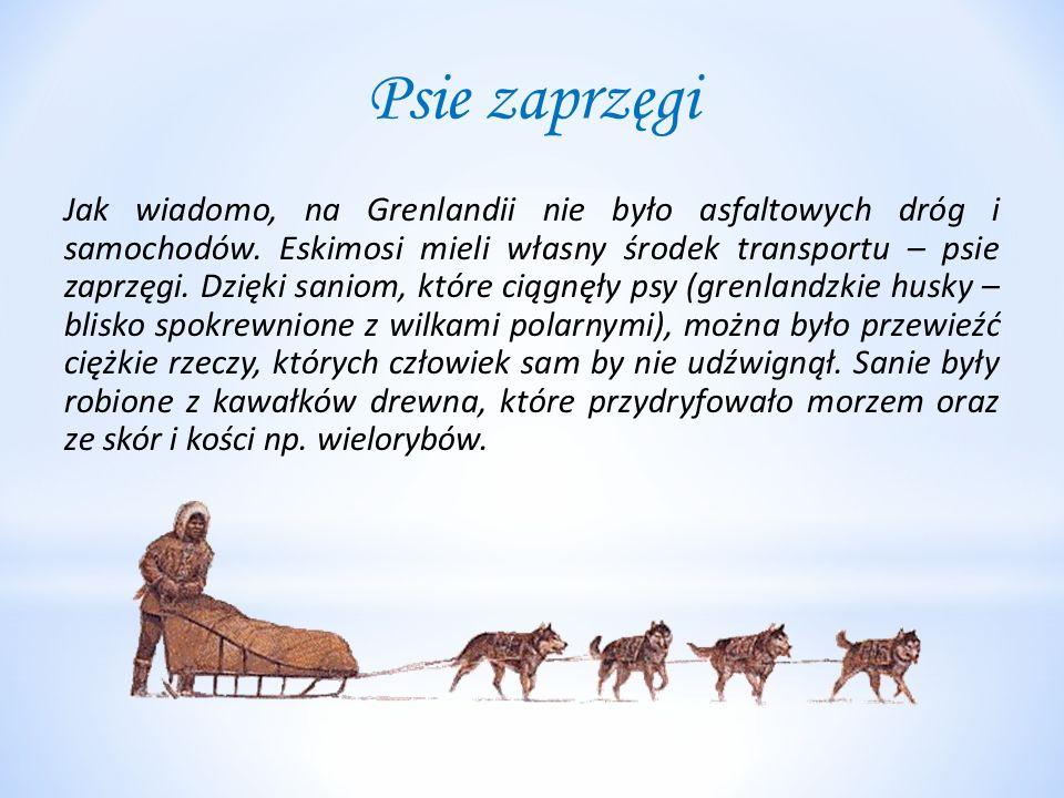 Psie zaprzęgi Jak wiadomo, na Grenlandii nie było asfaltowych dróg i samochodów. Eskimosi mieli własny środek transportu – psie zaprzęgi. Dzięki sanio