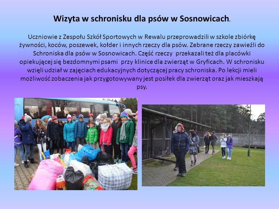 Wizyta w schronisku dla psów w Sosnowicach. Uczniowie z Zespołu Szkół Sportowych w Rewalu przeprowadzili w szkole zbiórkę żywności, koców, poszewek, k