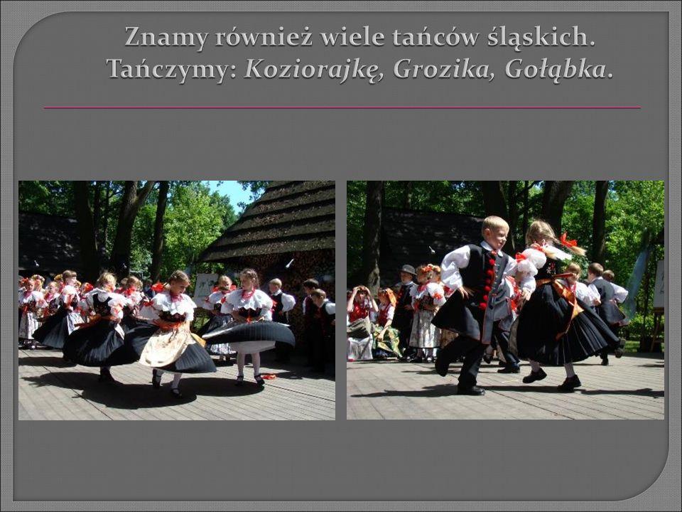  Śląsk to Nasze Miejsce w Europie.