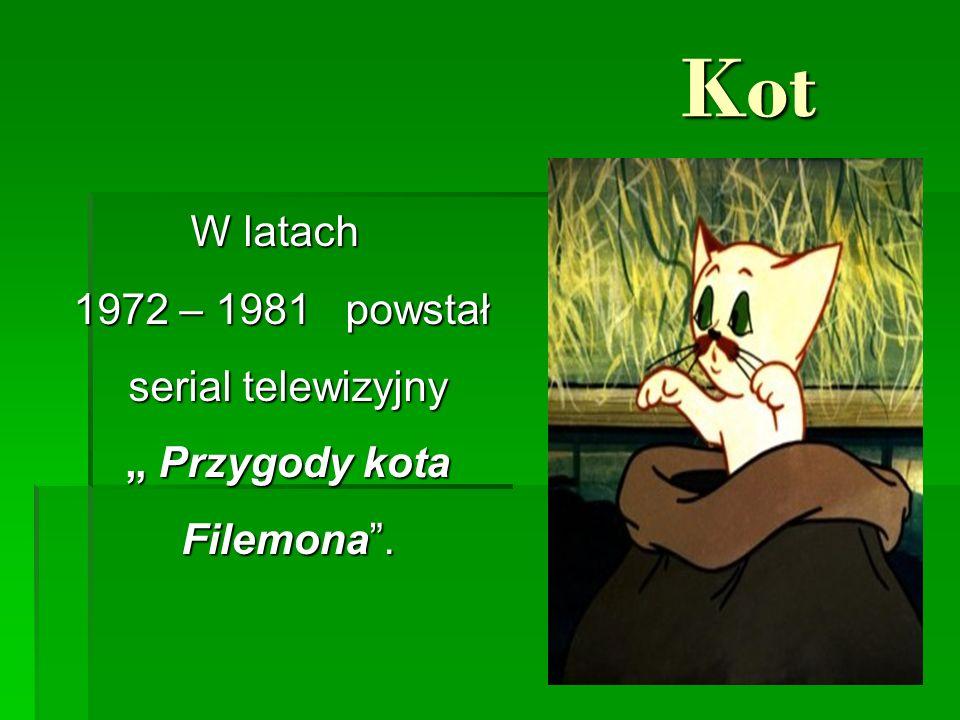 """Kot Kot W latach W latach 1972 – 1981 powstał serial telewizyjny """" Przygody kota Filemona ."""