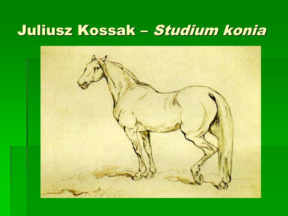 Juliusz Kossak – Studium konia