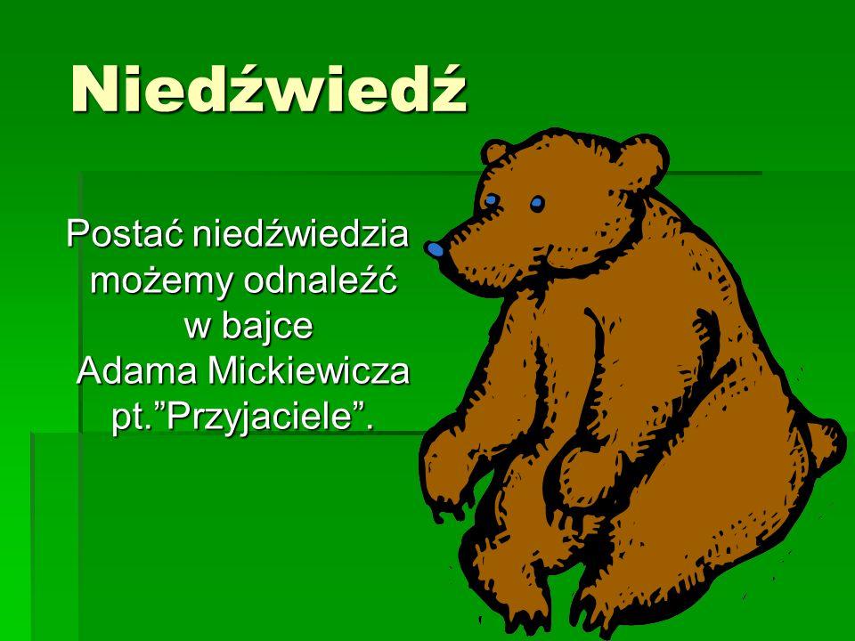 """Niedźwiedź Niedźwiedź Postać niedźwiedzia możemy odnaleźć w bajce Adama Mickiewicza pt.""""Przyjaciele"""". Postać niedźwiedzia możemy odnaleźć w bajce Adam"""