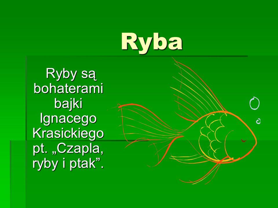 Ryba Ryba Ryby są bohaterami bajki Ignacego Krasickiego pt.