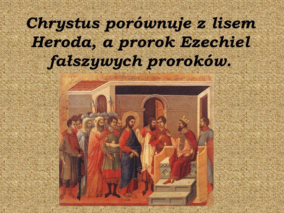 Chrystus porównuje z lisem Heroda, a prorok Ezechiel fałszywych proroków.