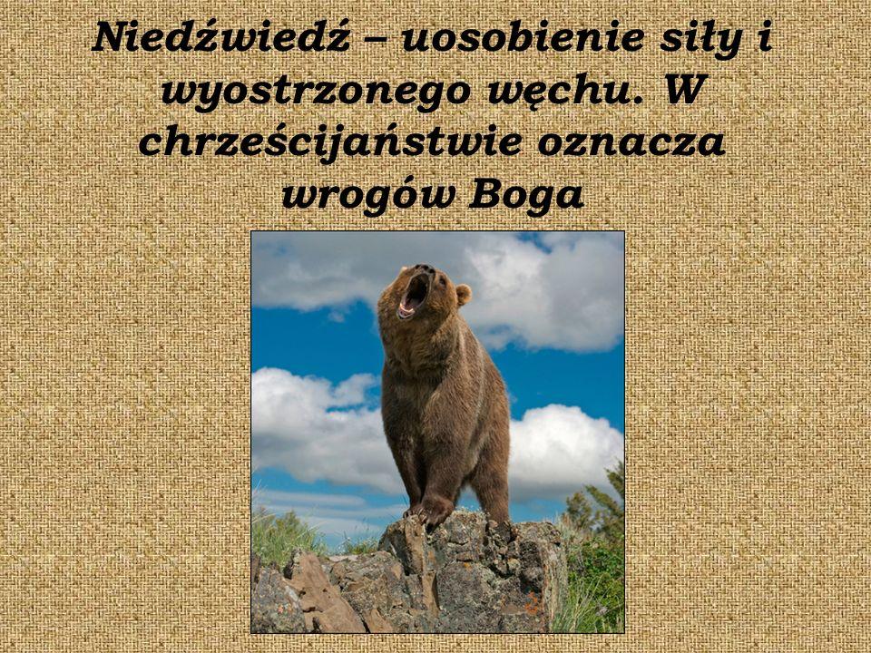 Niedźwiedź – uosobienie siły i wyostrzonego węchu. W chrześcijaństwie oznacza wrogów Boga
