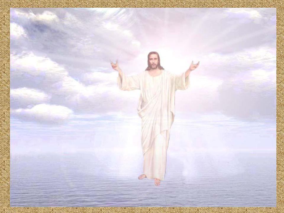 Ponieważ ryba nie ma powiek, wyobraża opatrzność Bożą, która nie drzemie i nie odpoczywa.