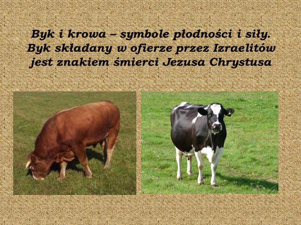 Byk i krowa – symbole płodności i siły.
