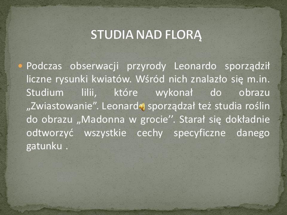 Podczas obserwacji przyrody Leonardo sporządził liczne rysunki kwiatów.