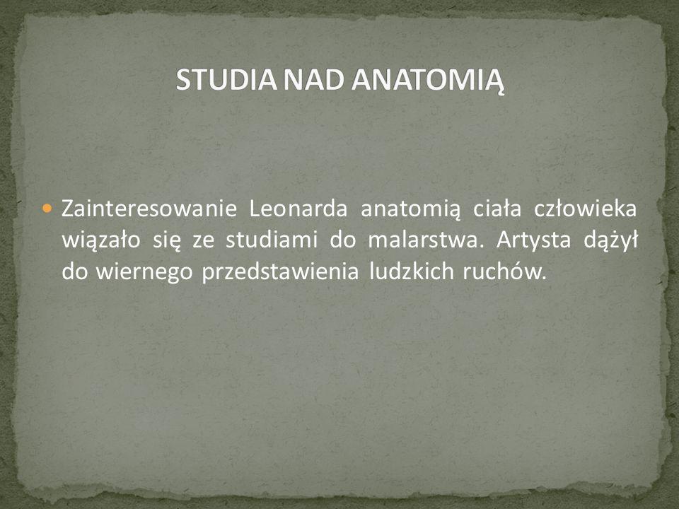 Zainteresowanie Leonarda anatomią ciała człowieka wiązało się ze studiami do malarstwa.