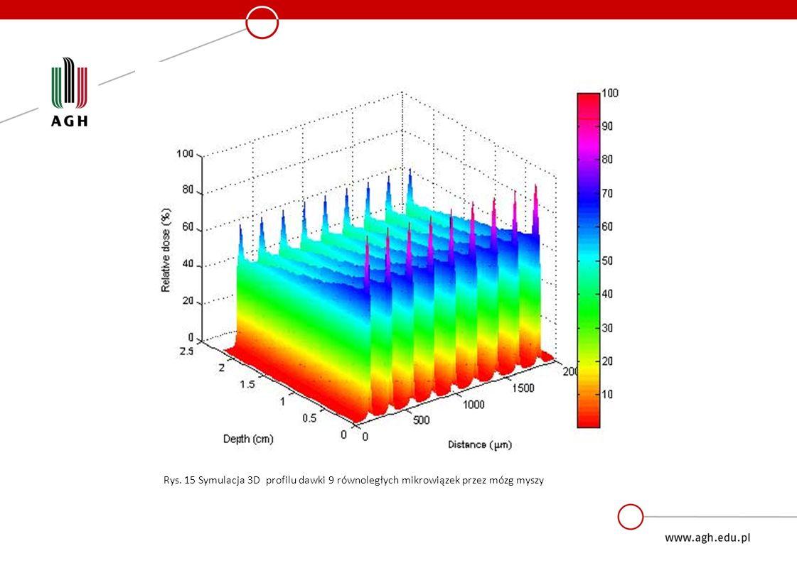 MRT Rys. 15 Symulacja 3D profilu dawki 9 równoległych mikrowiązek przez mózg myszy