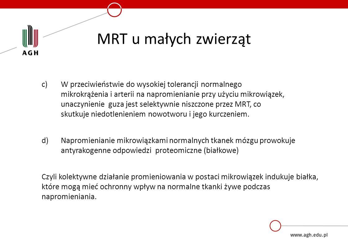 MRT u małych zwierząt c)W przeciwieństwie do wysokiej tolerancji normalnego mikrokrążenia i arterii na napromienianie przy użyciu mikrowiązek, unaczynienie guza jest selektywnie niszczone przez MRT, co skutkuje niedotlenieniem nowotworu i jego kurczeniem.
