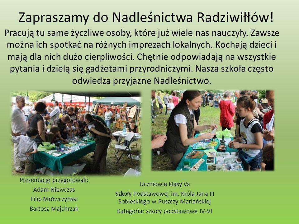 Zapraszamy do Nadleśnictwa Radziwiłłów.