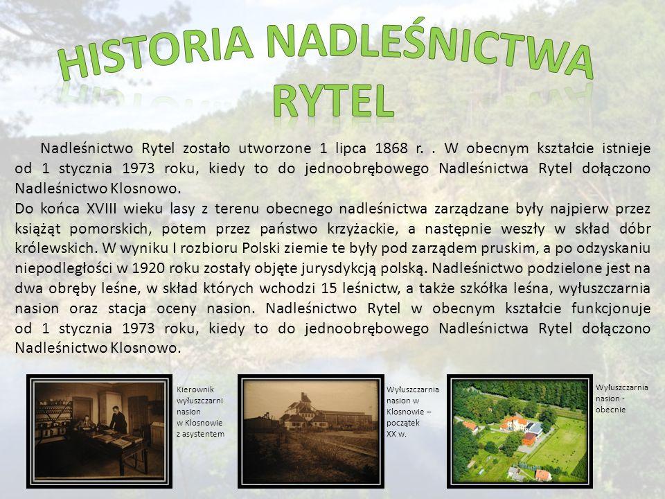 Nadleśnictwo Rytel zostało utworzone 1 lipca 1868 r..