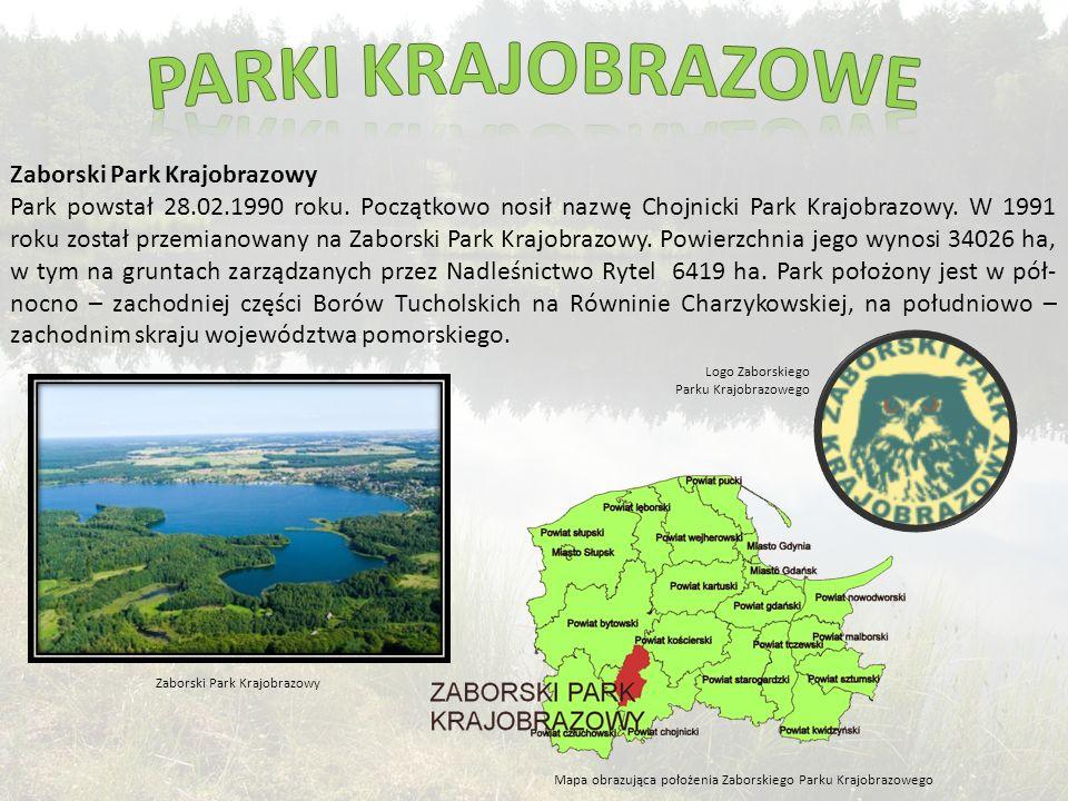Zaborski Park Krajobrazowy Park powstał 28.02.1990 roku.
