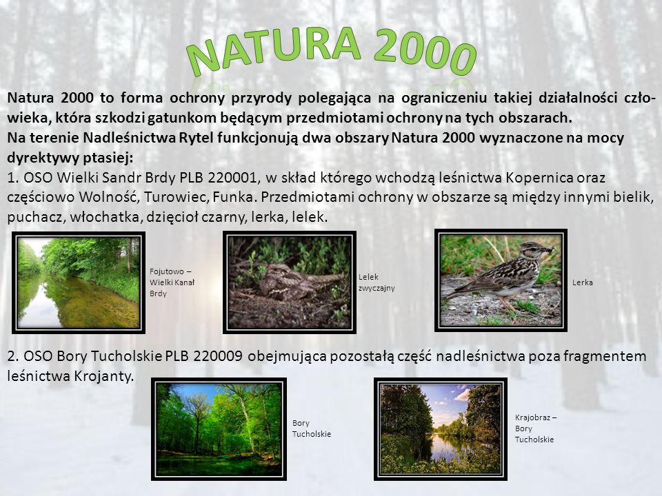 Natura 2000 to forma ochrony przyrody polegająca na ograniczeniu takiej działalności czło- wieka, która szkodzi gatunkom będącym przedmiotami ochrony na tych obszarach.