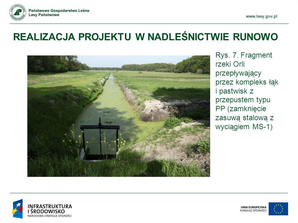 www.ckps.lasy.gov.pl www.lasy.gov.pl REALIZACJA PROJEKTU W NADLEŚNICTWIE RUNOWO Rys.