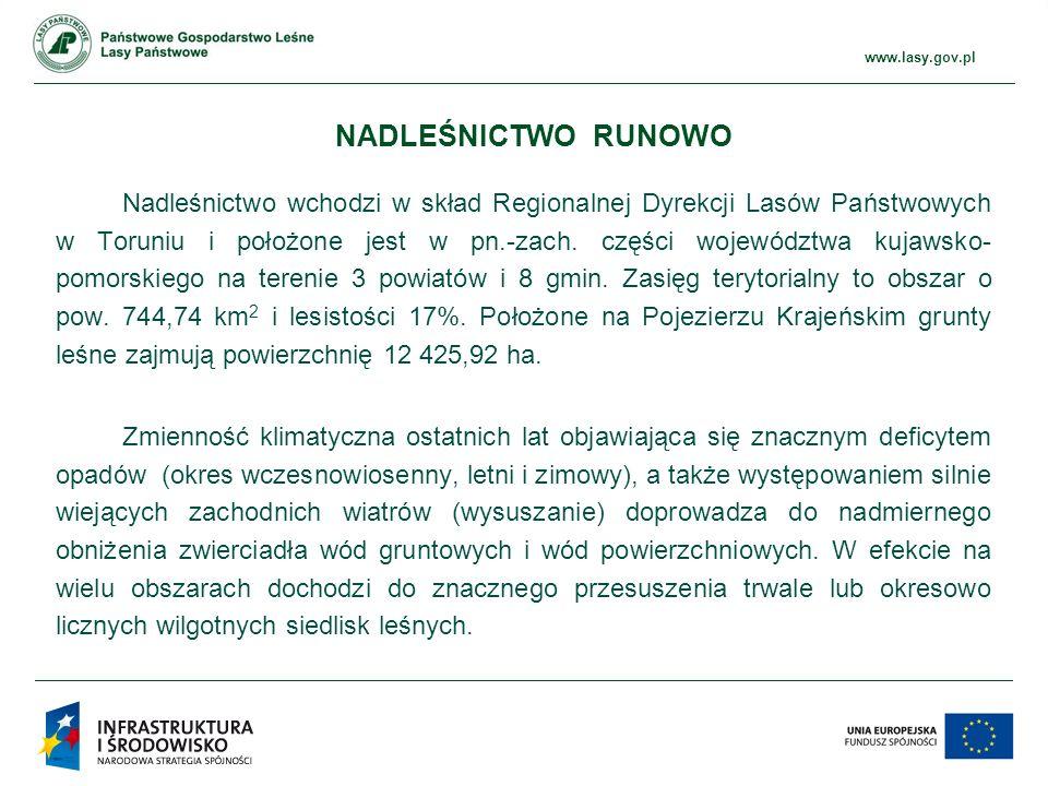 www.ckps.lasy.gov.pl www.lasy.gov.pl Nadleśnictwo wchodzi w skład Regionalnej Dyrekcji Lasów Państwowych w Toruniu i położone jest w pn.-zach.