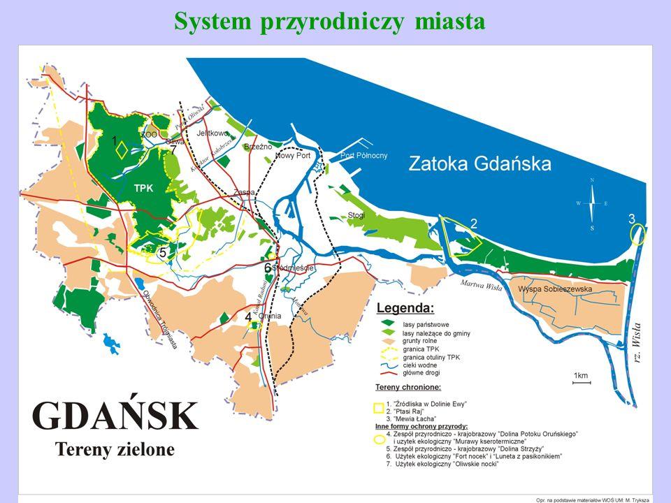 System przyrodniczy miasta