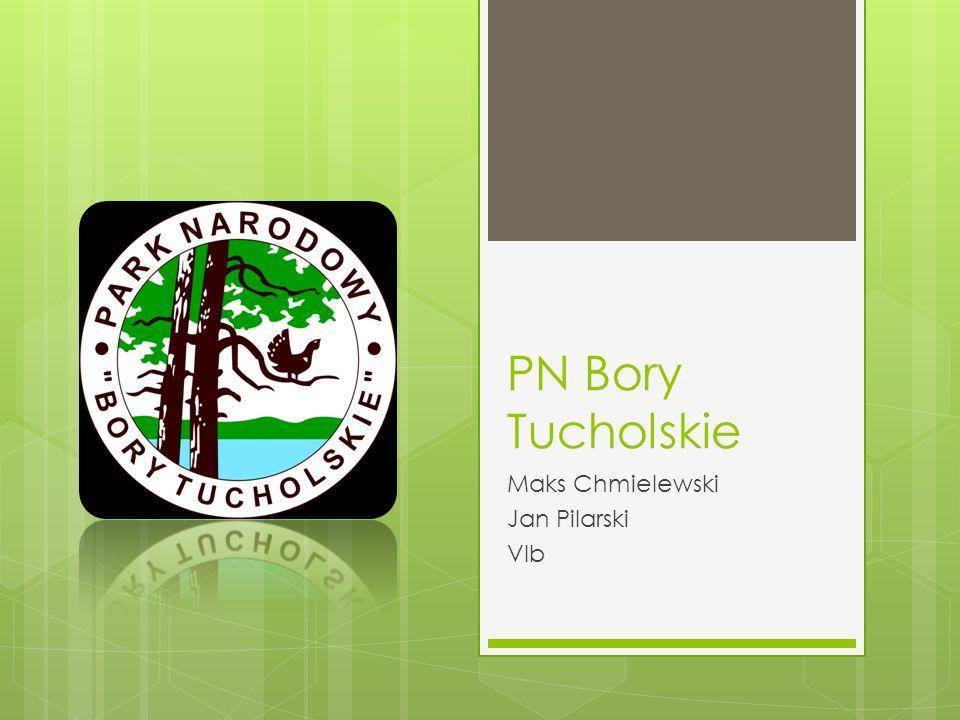 PN Bory Tucholskie Maks Chmielewski Jan Pilarski VIb