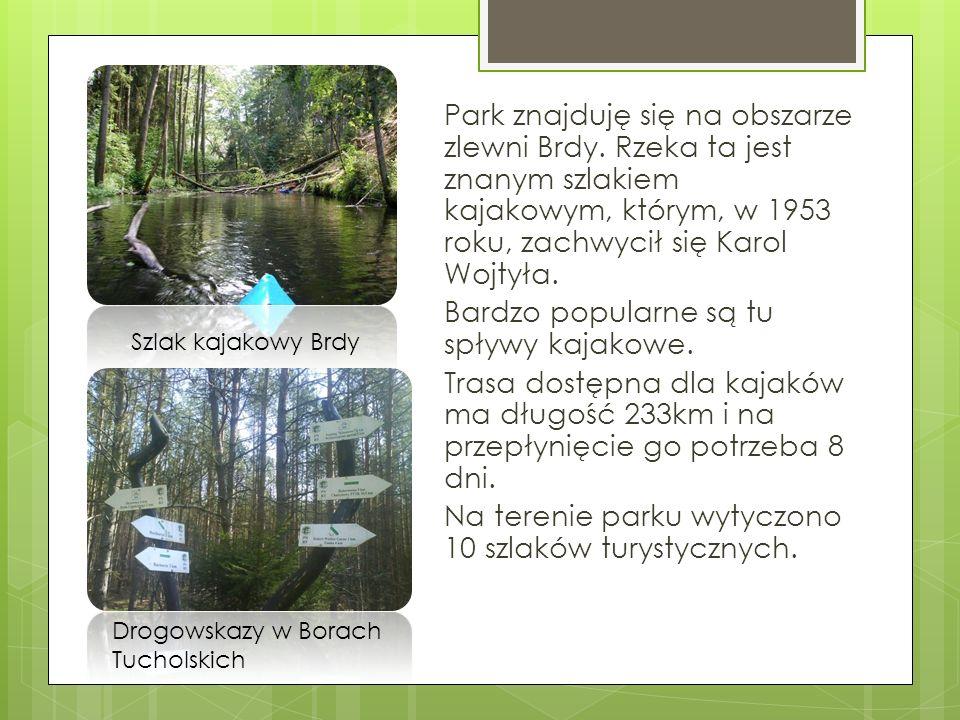 Park znajduję się na obszarze zlewni Brdy. Rzeka ta jest znanym szlakiem kajakowym, którym, w 1953 roku, zachwycił się Karol Wojtyła. Bardzo popularne