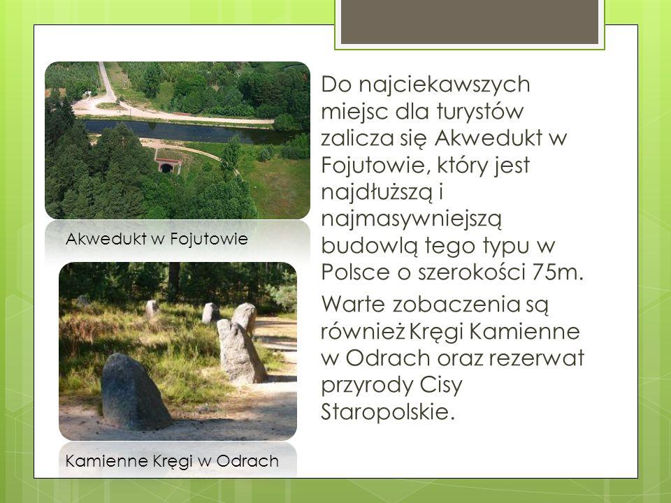 Do najciekawszych miejsc dla turystów zalicza się Akwedukt w Fojutowie, który jest najdłuższą i najmasywniejszą budowlą tego typu w Polsce o szerokośc