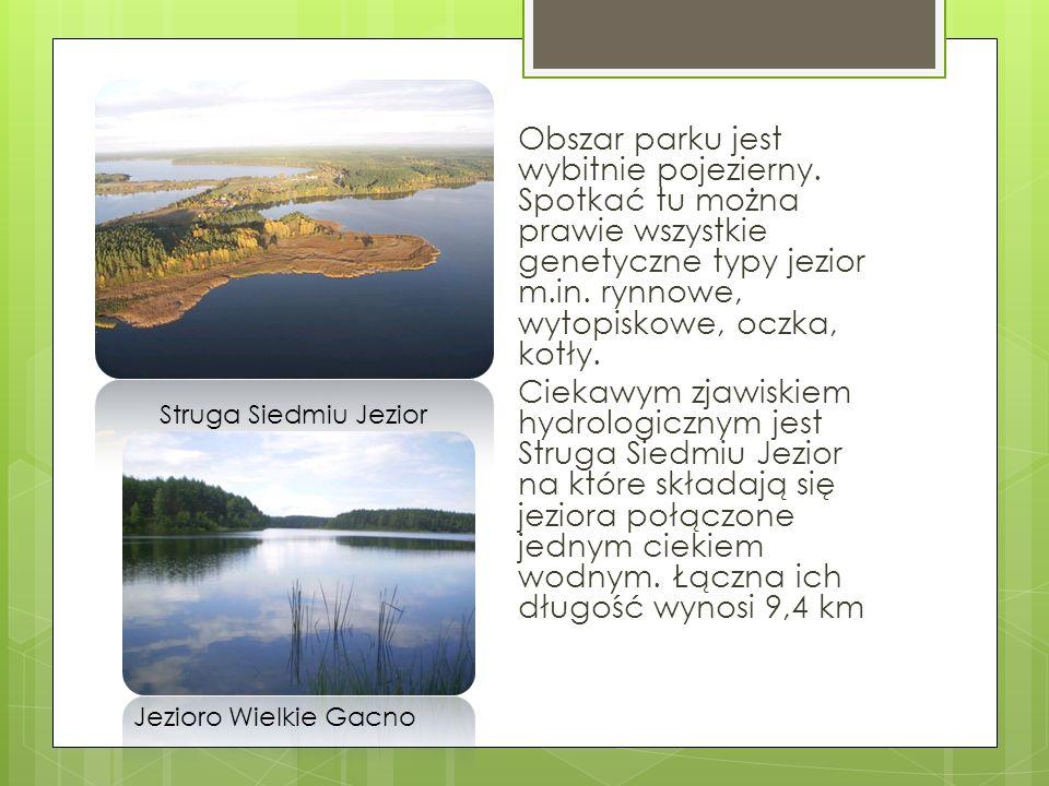 Obszar parku jest wybitnie pojezierny. Spotkać tu można prawie wszystkie genetyczne typy jezior m.in. rynnowe, wytopiskowe, oczka, kotły. Ciekawym zja