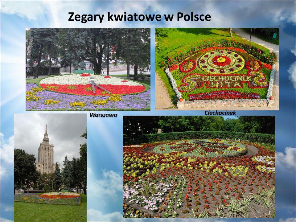 Zegary kwiatowe w Polsce Warszawa Ciechocinek