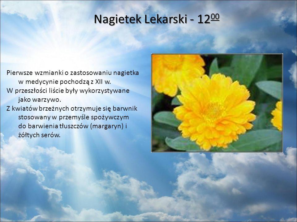 Nagietek Lekarski - 12 00 Nagietek Lekarski - 12 00 Pierwsze wzmianki o zastosowaniu nagietka w medycynie pochodzą z XII w.