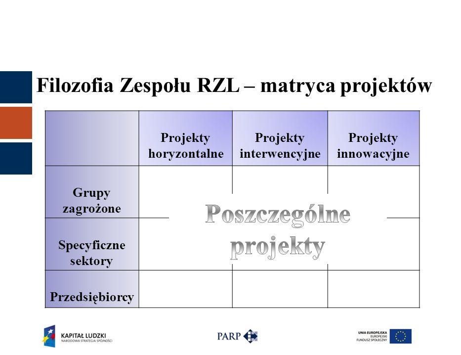 Filozofia Zespołu RZL – matryca projektów Projekty horyzontalne Projekty interwencyjne Projekty innowacyjne Grupy zagrożone Specyficzne sektory Przeds