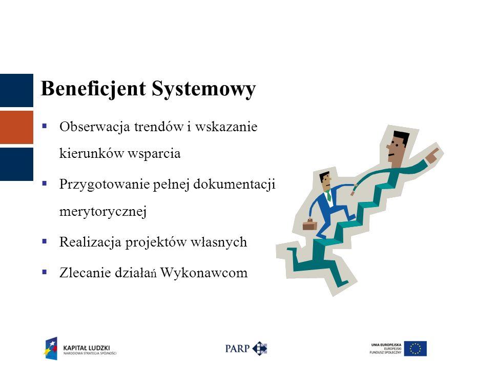 Beneficjent Systemowy  Obserwacja trendów i wskazanie kierunków wsparcia  Przygotowanie pe ł nej dokumentacji merytorycznej  Realizacja projektów w