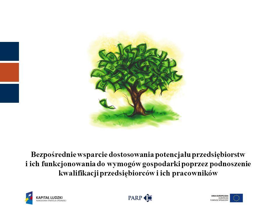 Bezpośrednie wsparcie dostosowania potencjału przedsiębiorstw i ich funkcjonowania do wymogów gospodarki poprzez podnoszenie kwalifikacji przedsiębior