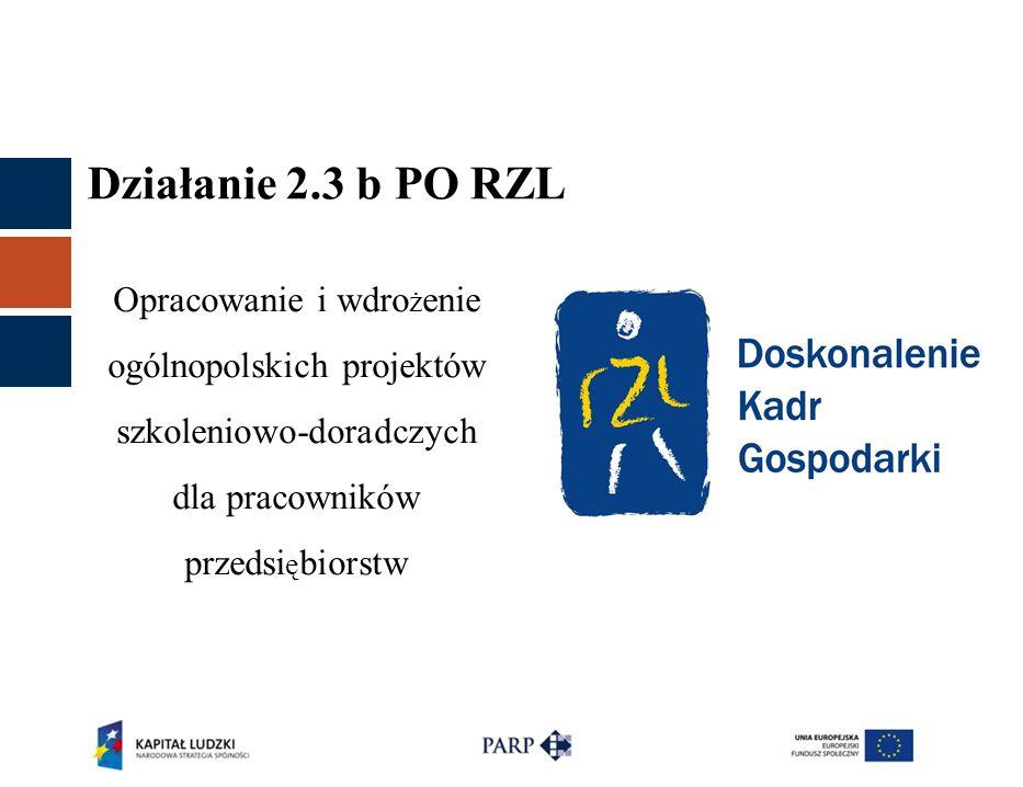 Działanie 2.3 b PO RZL Opracowanie i wdro ż enie ogólnopolskich projektów szkoleniowo-doradczych dla pracowników przedsi ę biorstw