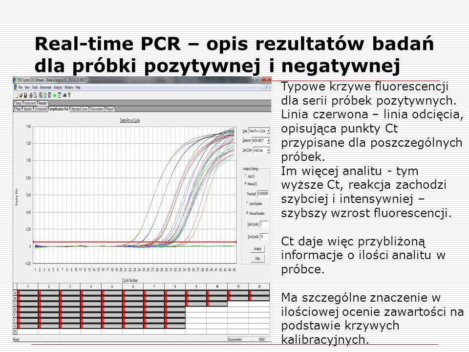 Real-time PCR – opis rezultatów badań dla próbki pozytywnej i negatywnej Typowe krzywe fluorescencji dla serii próbek pozytywnych.