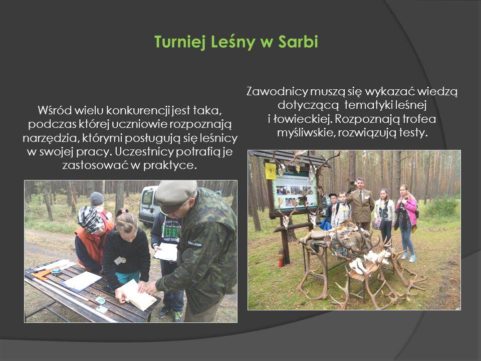 Turniej Leśny w Sarbi Wśród wielu konkurencji jest taka, podczas której uczniowie rozpoznają narzędzia, którymi posługują się leśnicy w swojej pracy.