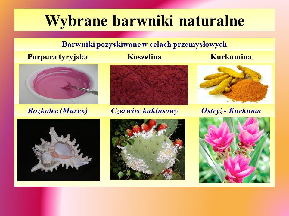 Wybrane barwniki naturalne Barwniki pozyskiwane w celach przemysłowych Purpura tyryjskaKoszelinaKurkumina Rozkolec (Murex)Czerwiec kaktusowyOstryż - Kurkuma