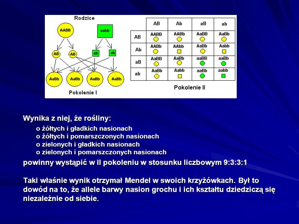 Słowniczek ważnych pojęć Gen – podstawowa jednostka dziedziczności.