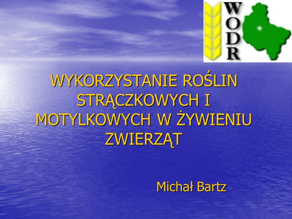 WYKORZYSTANIE ROŚLIN STRĄCZKOWYCH I MOTYLKOWYCH W ŻYWIENIU ZWIERZĄT Michał Bartz