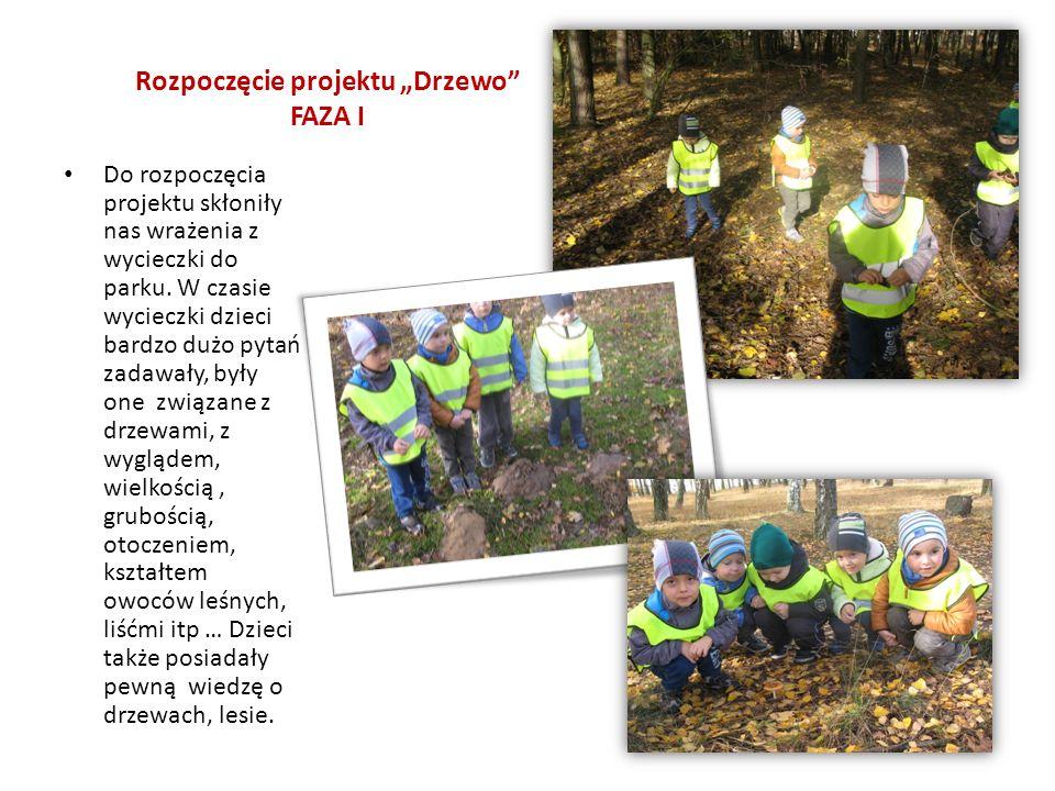 """Rozpoczęcie projektu """"Drzewo FAZA I Do rozpoczęcia projektu skłoniły nas wrażenia z wycieczki do parku."""