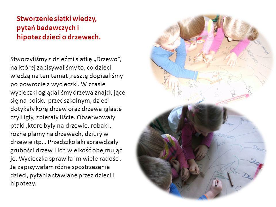 Stworzenie siatki wiedzy, pytań badawczych i hipotez dzieci o drzewach.