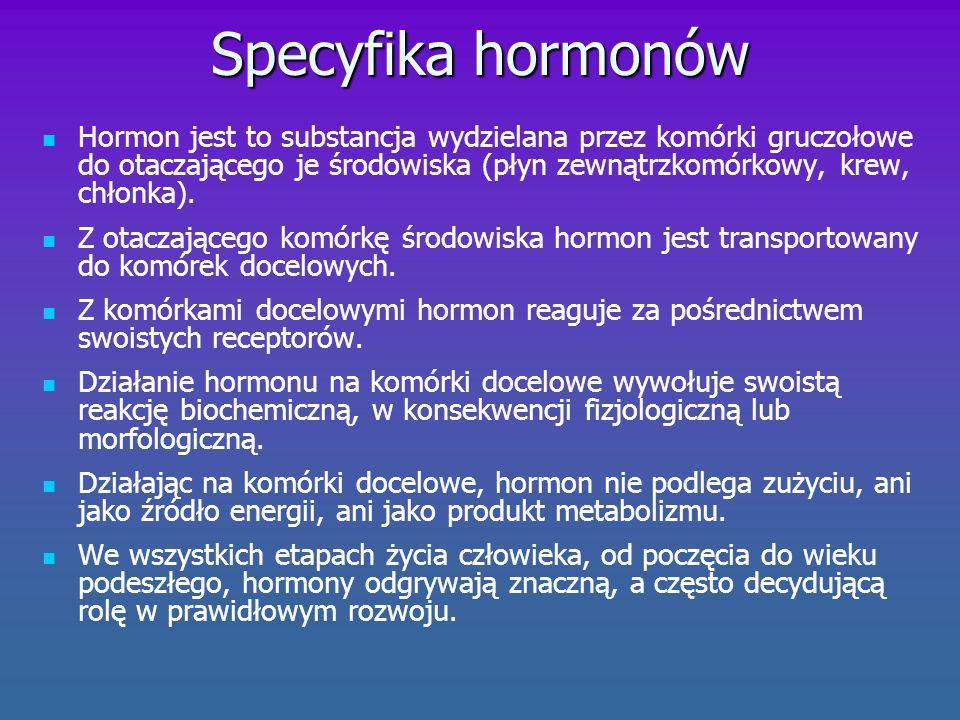 Gruczoły dokrewne Za produkcję hormonów odpowiedzialne są gruczoły dokrewne.