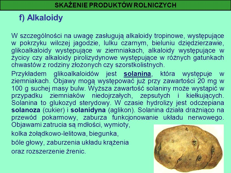 f) Alkaloidy W szczególności na uwagę zasługują alkaloidy tropinowe, występujące w pokrzyku wilczej jagodzie, lulku czarnym, bieluniu dziędzierzawie,
