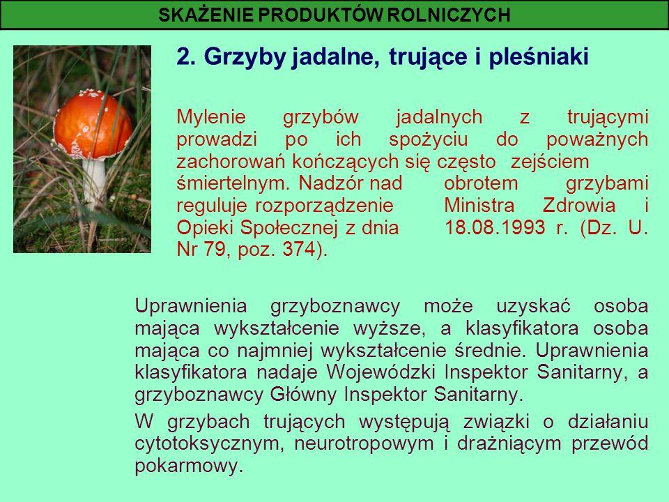 2. Grzyby jadalne, trujące i pleśniaki Mylenie grzybów jadalnych z trującymi prowadzi po ich spożyciu do poważnych zachorowań kończących się często ze
