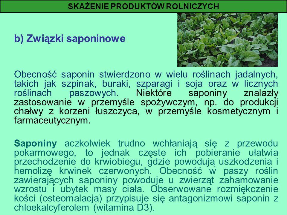 b) Związki saponinowe Obecność saponin stwierdzono w wielu roślinach jadalnych, takich jak szpinak, buraki, szparagi i soja oraz w licznych roślinach