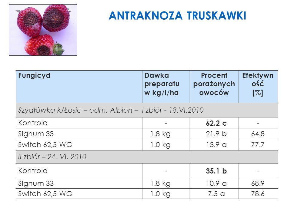 FungicydDawka preparatu w kg/l/ha Procent porażonych owoców Efektywn ość [%] Szydłówka k/Łosic – odm.