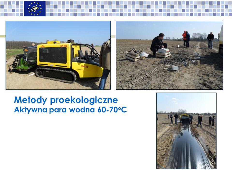 Metody proekologiczne Aktywna para wodna 60-70 o C