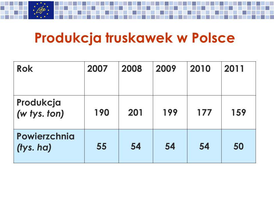 Produkcja truskawek w Polsce Rok20072008200920102011 Produkcja (w tys.